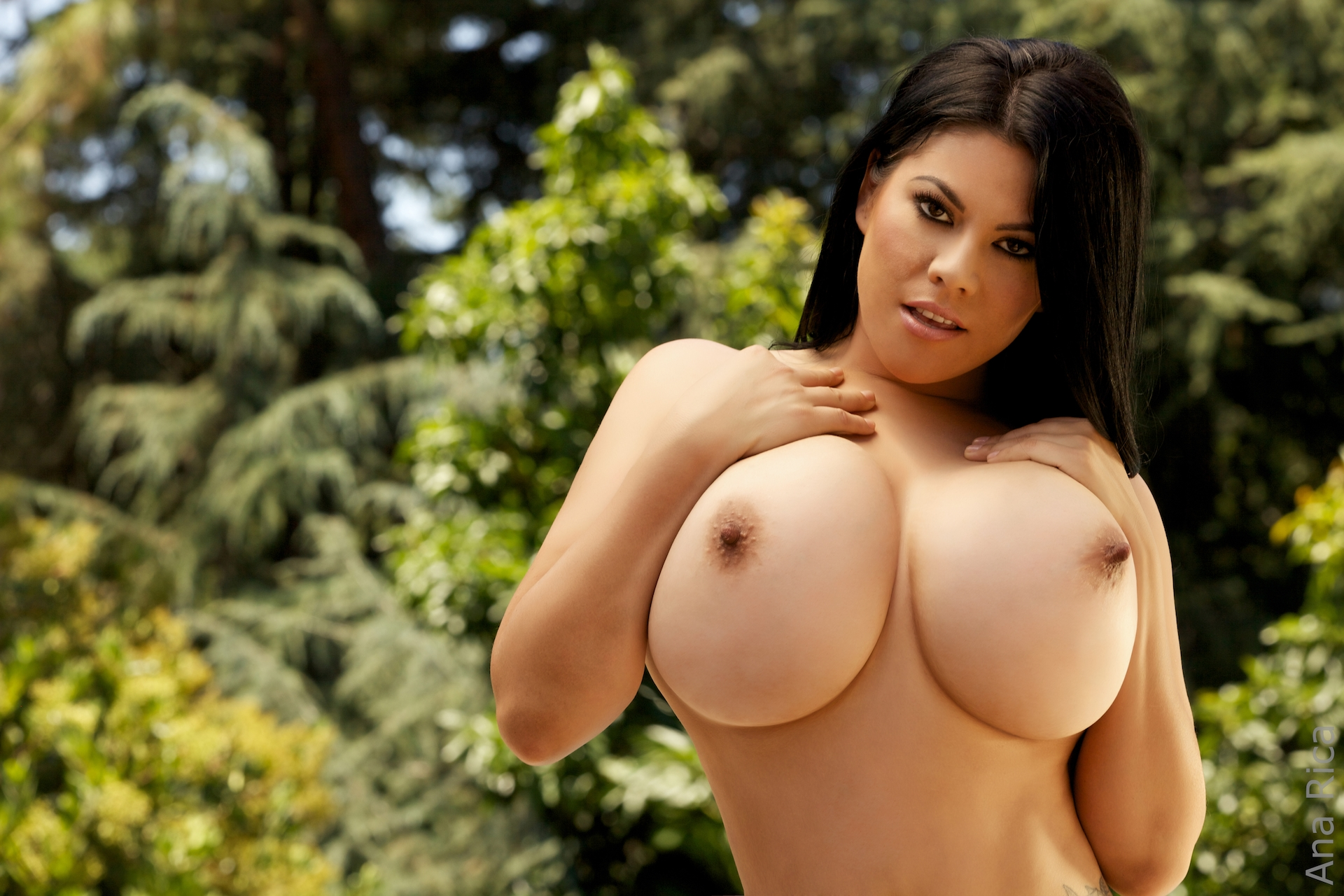 Tv big boobs, wild black sex hall of fame
